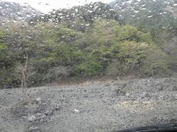 丹沢の戸沢でキャンプ、登山?しました。