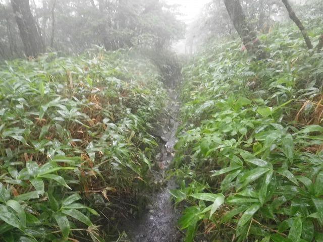 雨だと榛名富士の北側の登山道は滑るので要注意