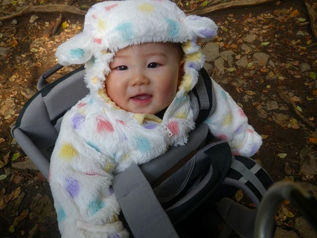 8ヶ月の赤ちゃんを背負って筑波山登山