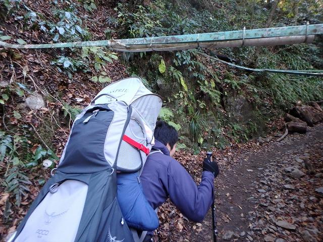 赤ちゃん背負って高尾山の6号路を登るが帰宅後に発熱(>_<)