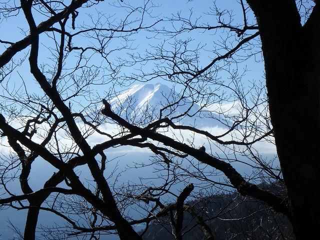 三ツ峠の表登山道から開運山⇒御巣鷹山⇒木無山⇒府戸尾根⇒天上山へ