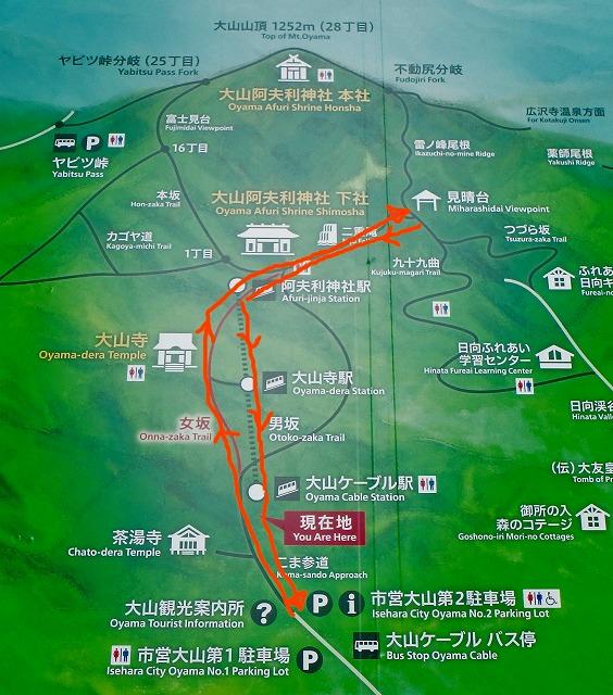 丹沢大山ハイキングルート案内図 地図