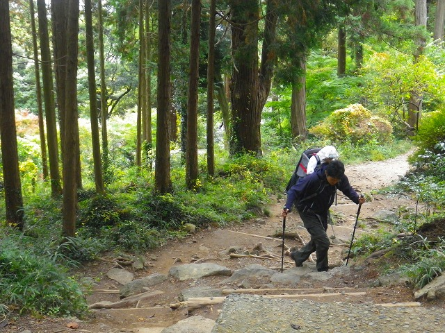 赤ちゃん背負っての登山道・トレッキングコース選び