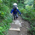 関東圏の赤ちゃん連れ登山におすすめの登山道・トレッキングコース