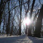 大晦日に地元、北海道の里山を歩きました。