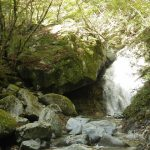 登山初心者におすすめの西丹沢自然教室ー本棚の滝 往復ルート