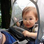 1歳3ヶ月の子供をベビーキャリア背負って筑波山を登る(下りはケーブルカーで)♪神社→山頂駅→紫峰杉→宮脇駅